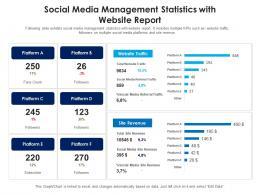 Social Media Management Statistics With Website Report