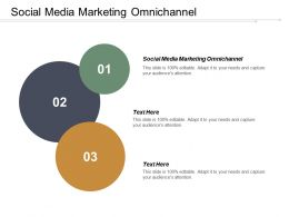 Social Media Marketing Omnichannel Ppt Powerpoint Presentation Gallery Example Introduction Cpb