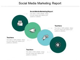 Social Media Marketing Report Ppt Powerpoint Presentation Styles Vector Cpb