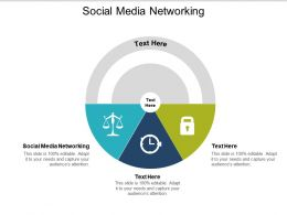 Social Media Networking Ppt Powerpoint Presentation Gallery Sample Cpb