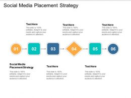 Social Media Placement Strategy Ppt Powerpoint Presentation Slides Example File Cpb