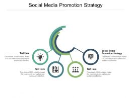 Social Media Promotion Strategy Ppt Powerpoint Presentation File Examples Cpb