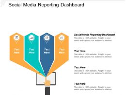 Social Media Reporting Dashboard Ppt Powerpoint Presentation Model Example Cpb