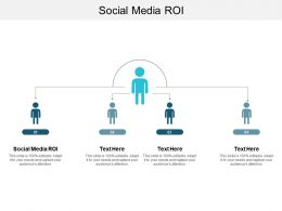 Social Media ROI Ppt Powerpoint Presentation Slides Files Cpb