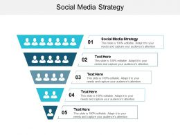 Social Media Strategy Ppt Powerpoint Presentation Gallery Graphics Cpb