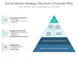 Social Media Strategy Structure Channels Plan