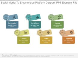 Social Media To E Commerce Platform Diagram Ppt Example File