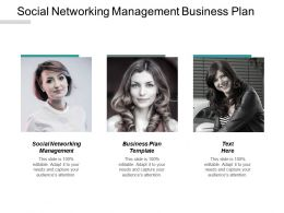 Social Networking Management Business Plan Template Exit Strategies Cpb