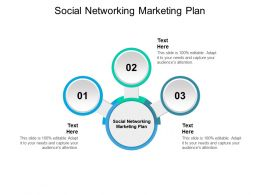 Social Networking Marketing Plan Ppt Powerpoint Presentation Inspiration Background Cpb