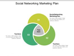 Social Networking Marketing Plan Ppt Powerpoint Presentation Model Display Cpb
