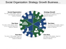 Social Organization Strategy Growth Business Analyst Manager
