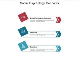 Social Psychology Concepts Ppt Powerpoint Presentation Icon Show Cpb