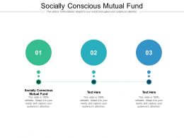 Socially Conscious Mutual Fund Ppt Powerpoint Presentation Portfolio Cpb
