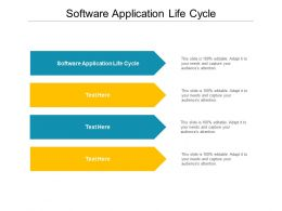 Software Application Life Cycle Ppt Powerpoint Presentation Layouts Cpb
