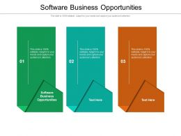 Software Business Opportunities Ppt Powerpoint Presentation Infographics Example Cpb