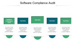Software Compliance Audit Ppt Powerpoint Presentation Styles Clipart Cpb