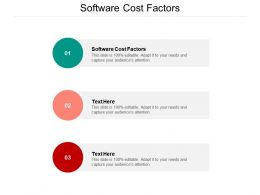 Software Cost Factors Ppt Powerpoint Presentation Visual Aids Backgrounds Cpb