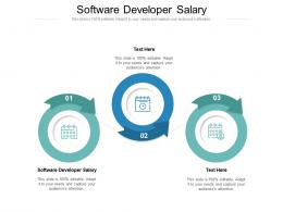 Software Developer Salary Ppt Powerpoint Presentation Layouts Information Cpb