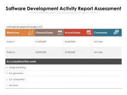 Software Development Activity Report Assessment