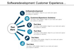 Software Development Customer Experience Solutions Global Management Consulting Services Cpb