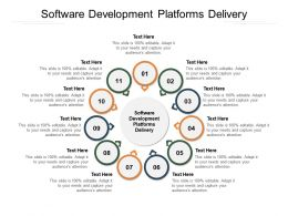 Software Development Platforms Delivery Ppt Powerpoint Presentation Professional Infographic Template Cpb