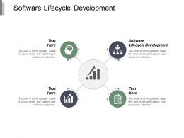 Software Lifecycle Development Ppt Powerpoint Presentation Portfolio Design Ideas Cpb
