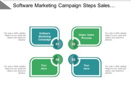 Software Marketing Campaign Steps Sales Process Unique Resume Cpb