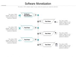 Software Monetization Ppt Powerpoint Presentation Professional Slide Cpb