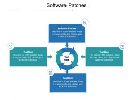 Software Patches Ppt Powerpoint Presentation Model Layout Cpb