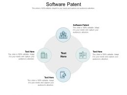 Software Patent Ppt Powerpoint Presentation Icon Templates Cpb