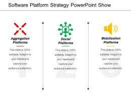 software_platform_strategy_powerpoint_show_Slide01