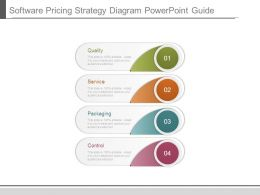 Software Pricing Strategy Diagram Powerpoint Guide