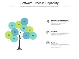 Software Process Capability Ppt Powerpoint Presentation Infographic Template Pictures Cpb