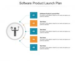 Software Product Launch Plan Ppt Powerpoint Presentation Layouts Layout Cpb
