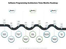 Software Programming Architecture Three Months Roadmap