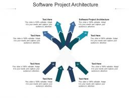 Software Project Architecture Ppt Powerpoint Presentation Infographics Show Cpb
