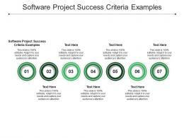 Software Project Success Criteria Examples Ppt Powerpoint Presentation Summary Portfolio Cpb