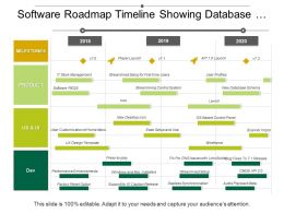 Software Roadmap Timeline Showing Database Schema User Profiles