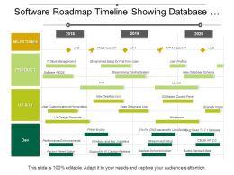 Software Roadmap Timeline Showing Database Schema User Profiles