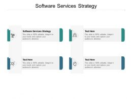 Software Services Strategy Ppt Powerpoint Presentation Styles Slide Cpb