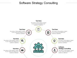 Software Strategy Consulting Ppt Powerpoint Presentation Outline Templates Cpb