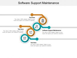 Software Support Maintenance Ppt Powerpoint Presentation Model Summary Cpb