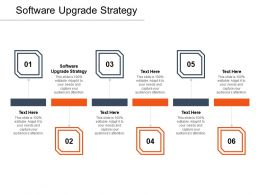 Software Upgrade Strategy Ppt Powerpoint Presentation Model Styles Cpb