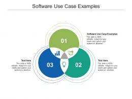 Software Use Case Examples Ppt Powerpoint Presentation Ideas Microsoft Cpb