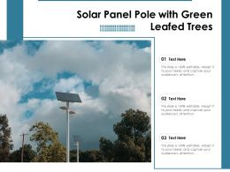 Solar Panel Pole With Green Leafed Trees