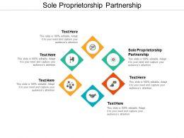 Sole Proprietorship Partnership Ppt Powerpoint Presentation Infographic Template Portrait Cpb