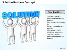 Solution Business Concept Ppt Graphic Icon