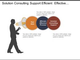 Solution Consulting Support Efficient Effective Process Budget Process