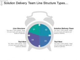 Solution Delivery Team Line Structure Types Organizational Structure