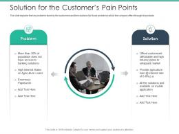 Solution For The Customers Pain Points Spot Market Ppt Graphics